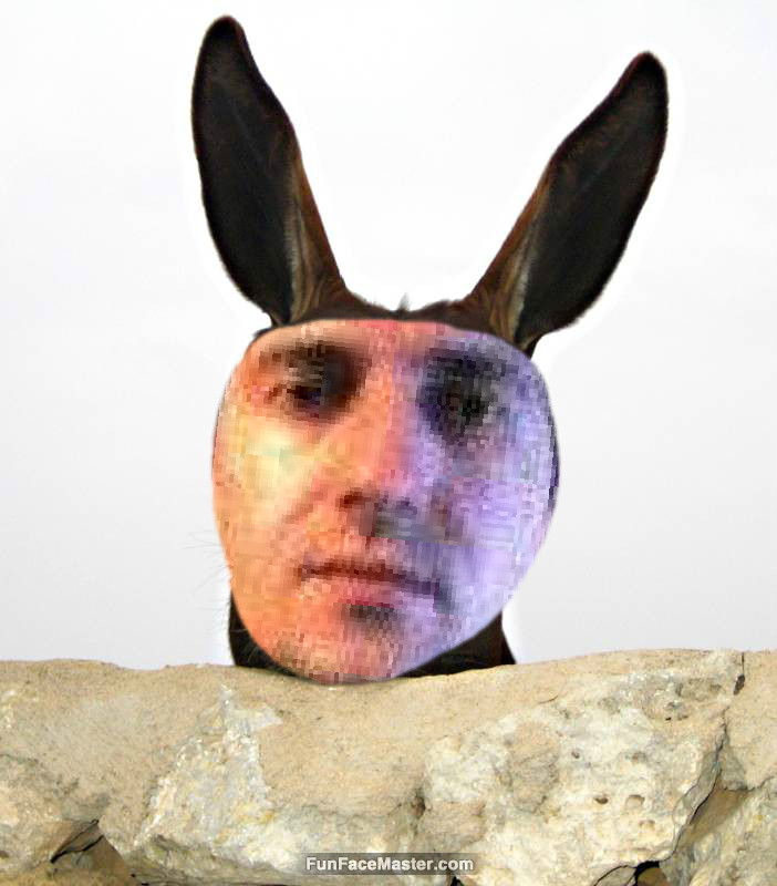 uutu use idiot donkey template put your face in fun photo